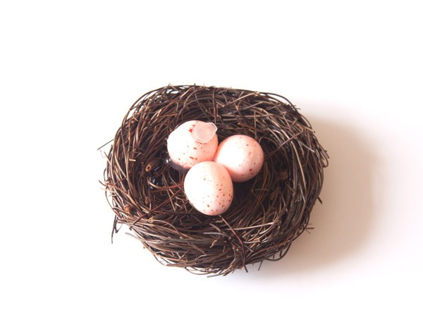 Fake Birds Nest Geocache Container - Red/Pink Egg (top)